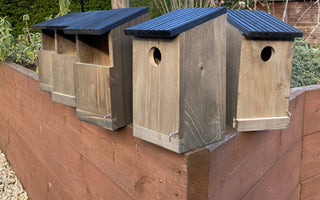 Sustainability Sunday: National Nest Box week