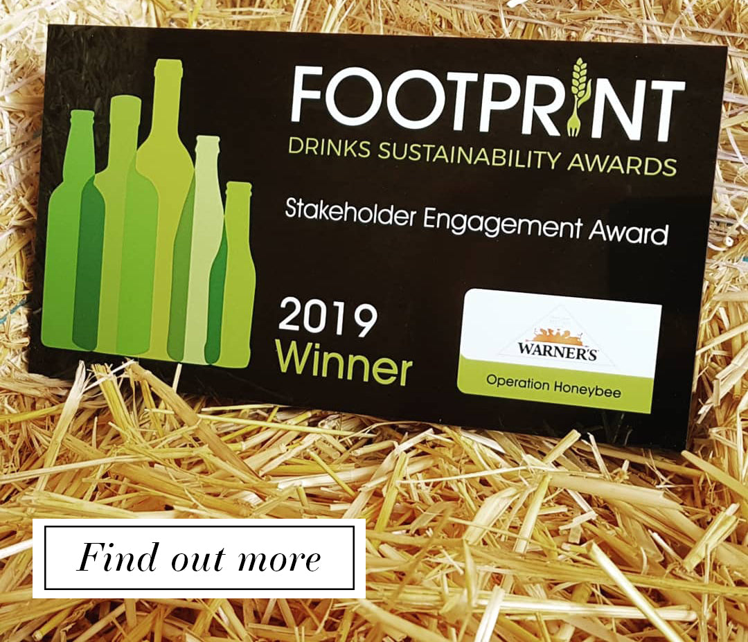Sustainability award 2019