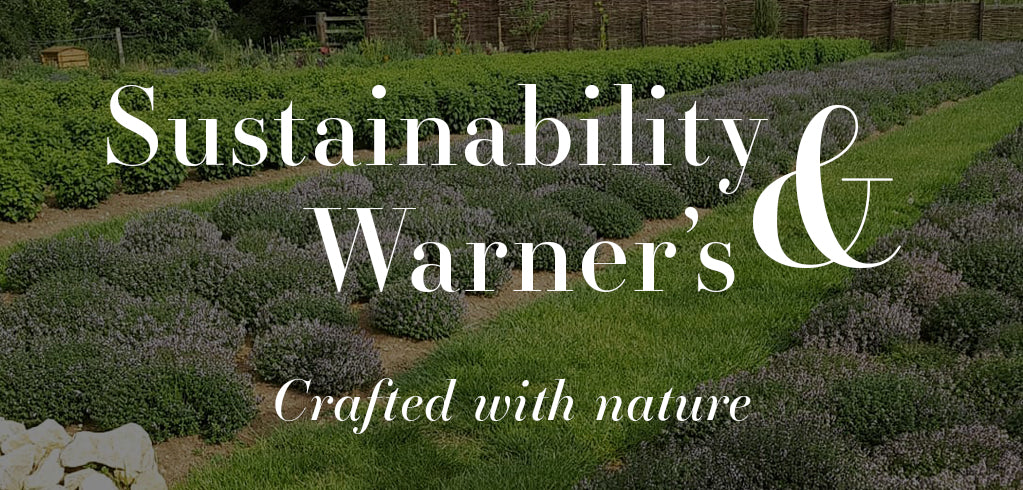 Sustainability & Warner's Distillery