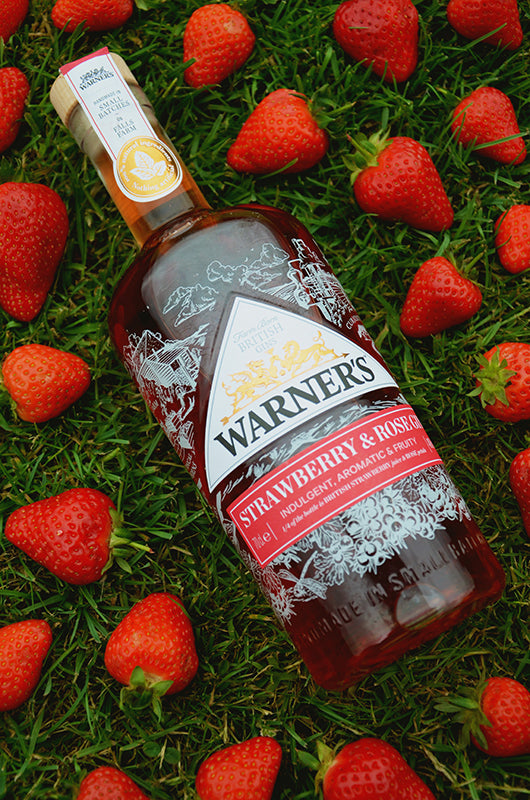 Warner's Strawberry and Rose Gin