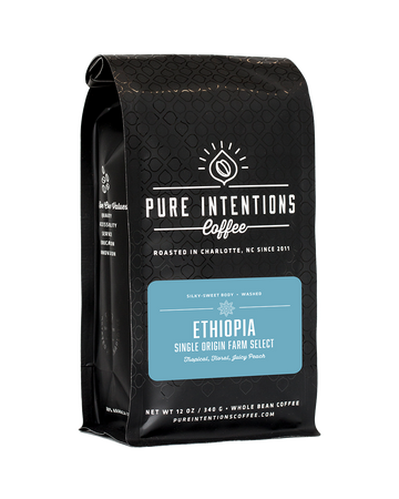 Pure Intentions Ethiopia Various Regions & Small Farmholders Coffee 2020