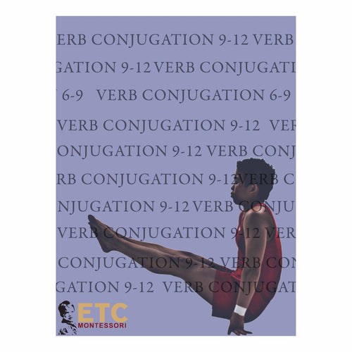 Verb Conjugation Level 9-12 ELC6063