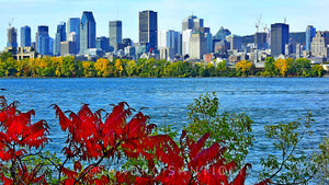 Wall Pictures  - CITYSCAPES - MONTREAL - CAN3687