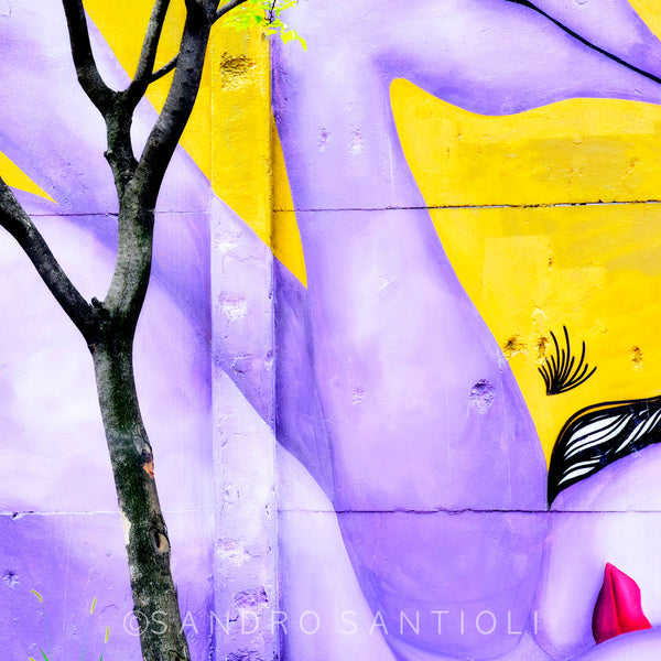 Wall Pictures - MURALES- BRA0141A