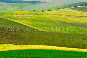 Wall Pictures - TUSCANY Landscapes - DSC9100