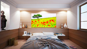 Wall Pictures - TULIPS & POPPIES - TOS6266