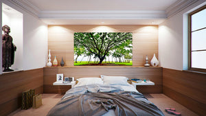 Wall Pictures - TREES - HAW3163