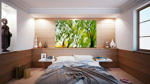 Wall Pictures  - FOLIAGE - CAN3209