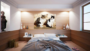 Wall Pictures - ANIMALS - BRA2997
