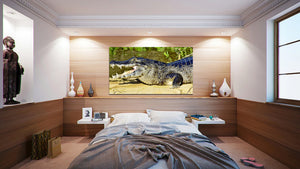 Wall Pictures - ANIMALS - BRA9499