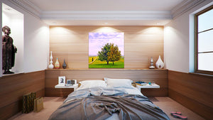 Wall Pictures - TUSCANY Landscapes - TOS6866