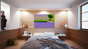 Wall Pictures - PROVENCE Lavender Fields - PRO3259