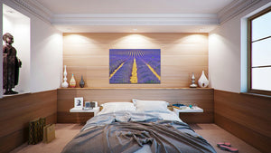 Wall Pictures - PROVENCE Lavender Fields - PRO3544