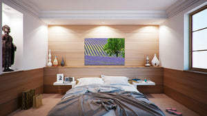 Wall Pictures - PROVENCE Lavender Fields - PRO3266
