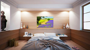Wall Pictures - PROVENCE Lavender Fields - PRO8748
