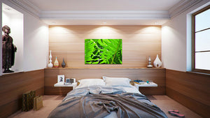 Wall Pictures - BOTANIC - TOS4967