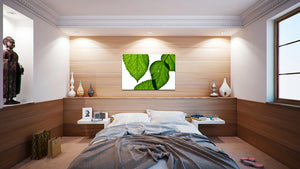 Wall Pictures - BOTANIC - TOS4976