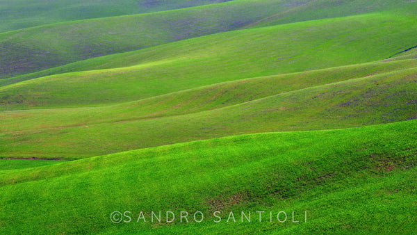 Wall Pictures - TUSCANY Landscapes - DOL7616
