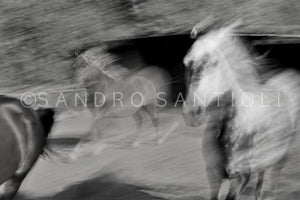 Wall Pictures - HORSES Abstract - ISL0033