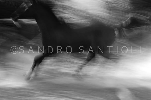 Wall Pictures - HORSES Abstract - ISL0056