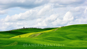 Wall Pictures - TUSCANY Landscapes - MAR8057