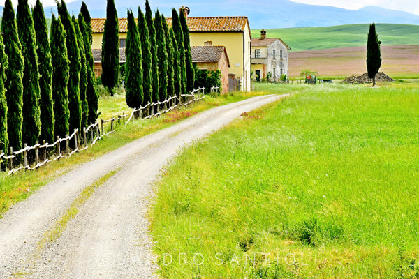 Wall Pictures - TUSCANY Landscapes - SCA9503