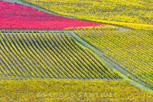 Wall Pictures - TUSCANY Landscapes - TOS0569