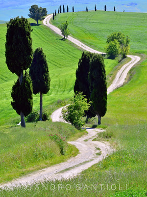 Wall Pictures - TUSCANY Landscapes - TOS1781