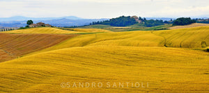 Wall Pictures - TUSCANY Landscapes - TOS2941