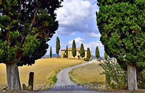 Wall Pictures - TUSCANY Landscapes - TOS3468