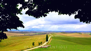 Wall Pictures - TUSCANY Landscapes - TOS4067