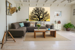 Wall Pictures - TREES - SAR5106