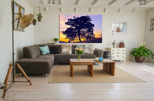 Wall Pictures - TREES - ABC2590