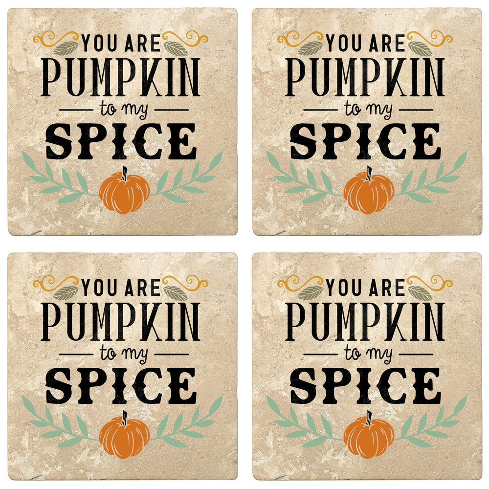 "Set of 4 Absorbent Stone 4"" Fall Autumn Coasters, You Are Pumpkin To My Spice"