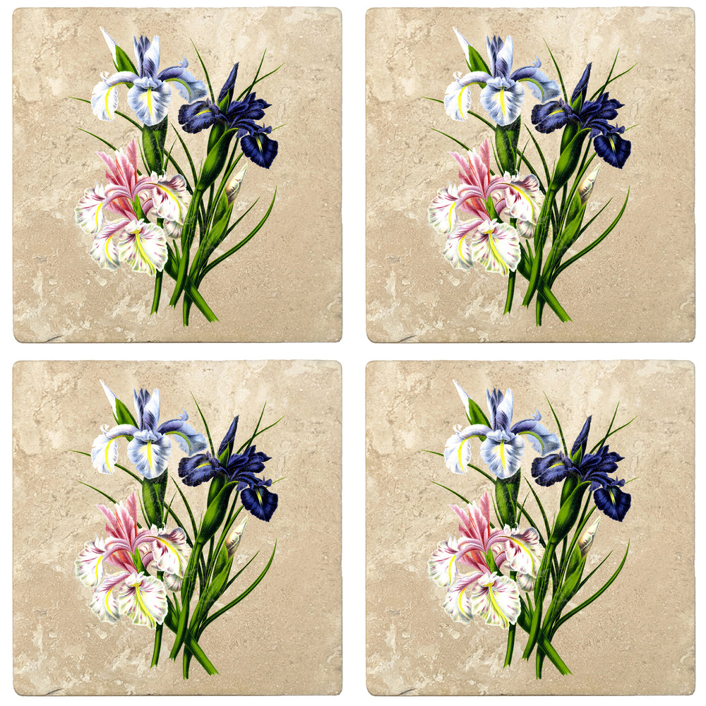 "Set of 4 Absorbent Stone 4"" Flower Designs Drink Coasters, English Iris"