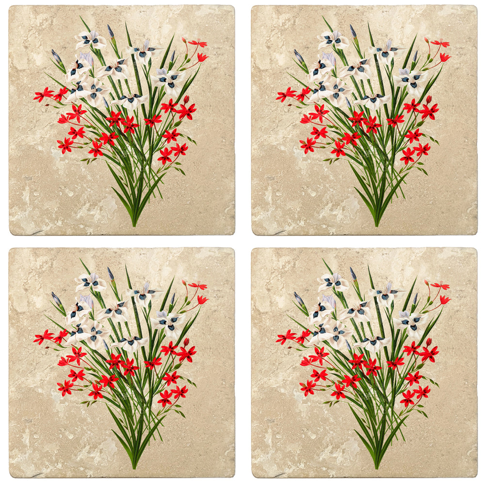 "Set of 4 Absorbent Stone 4"" Flower Designs Drink Coasters, Pavonia - Cruenta"