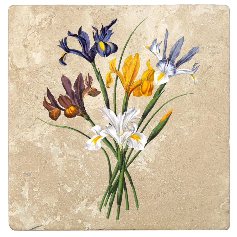 "Set of 4 Absorbent Stone 4"" Flower Designs Drink Coasters, Spanish Iris Bouquet"