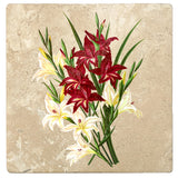 "Set of 4 Absorbent Stone 4"" Flower Designs Drink Coasters, White And Scarlet Gladiolus"