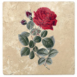 "Set of 4 Absorbent Stone 4"" Flower Designs Drink Coasters, General Jacqueminot Rose"