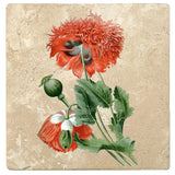 "Set of 4 Absorbent Stone 4"" Flower Designs Drink Coasters, Opium Poppy"