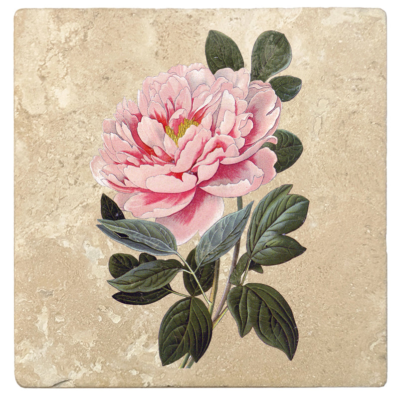 2 x Coasters Pink Rose Flower Love Home Gift #15593