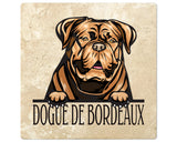 "[Set of 4] 4"" Premium Absorbent Travertine Dog Lovers Square Coaster - Light Brown Dogue De Bordeaux"