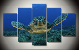 Five Piece Turtle Painting