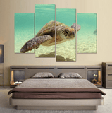 Four Piece HD Turtle Painting