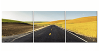 Three Piece Open Country Road Painting