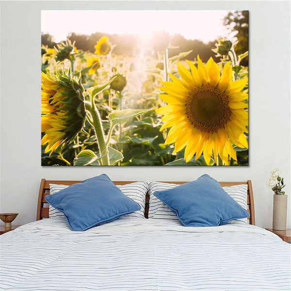 One Piece Sunflower Field Painting