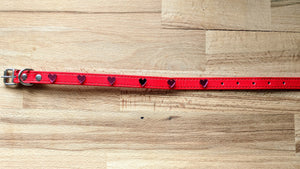 Doggie Bling Collar