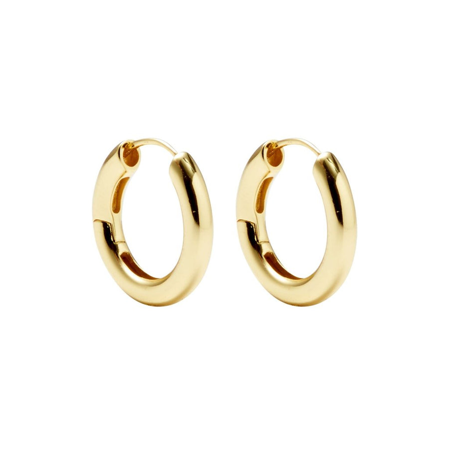 Hinge Hoops in Gold