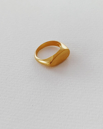 Oval Signet Ring in Gold