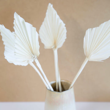 Palm Leaf White